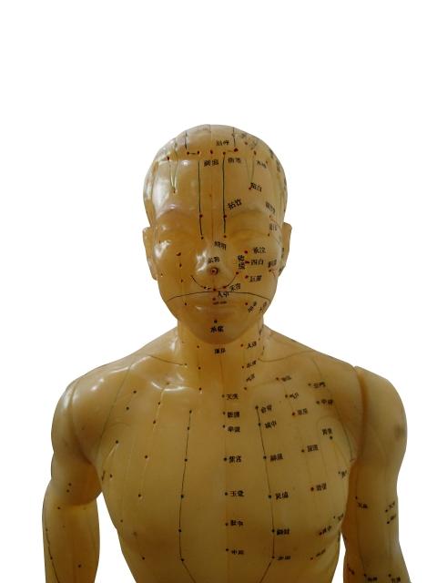 認知症・ボケ予防に効果的「ツボ」